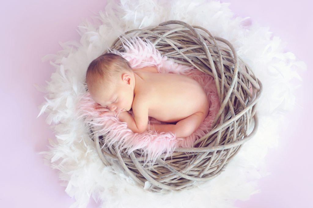 fotografo-bebes.es